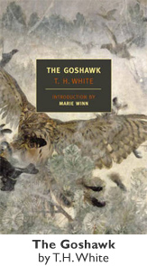 The Goshawk by T H White