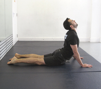 Step 4 - Upper Body Raise