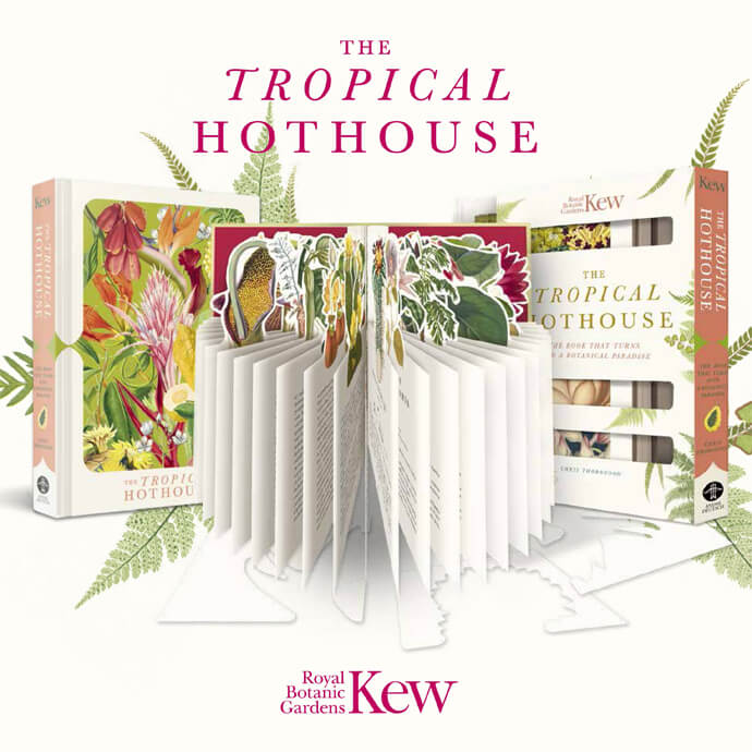 Paperscapes: The Tropical Hothouse