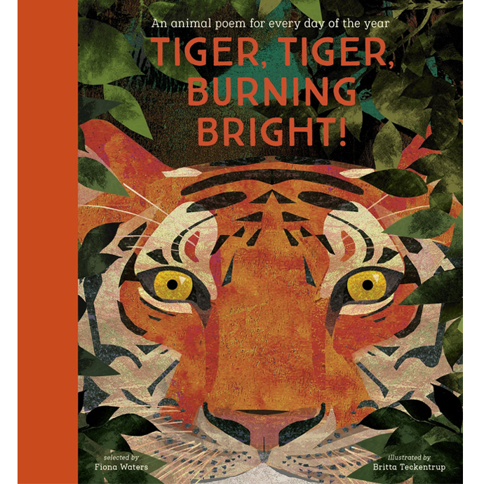 Tiger, Tiger, Burning Bright Fiona Waters