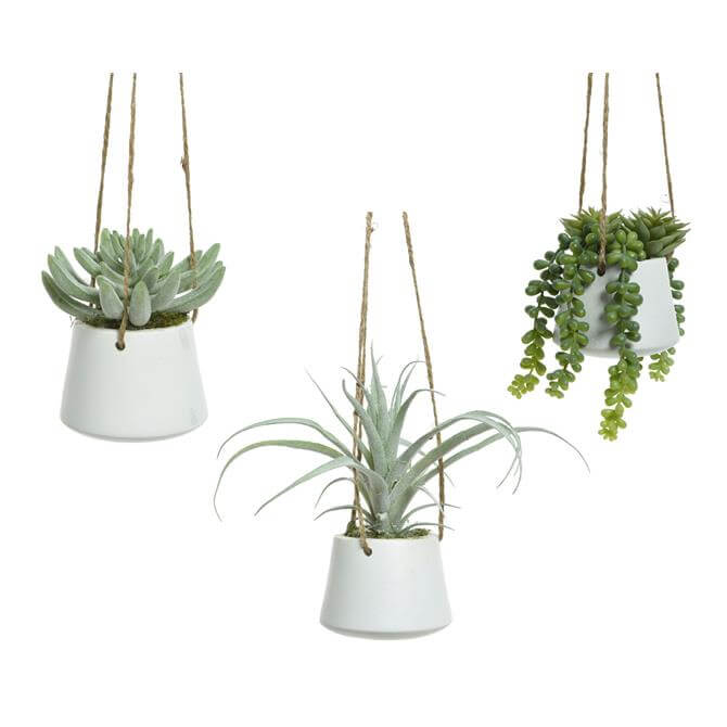 Kaemingk Plant In Hanging Pot  Assorted