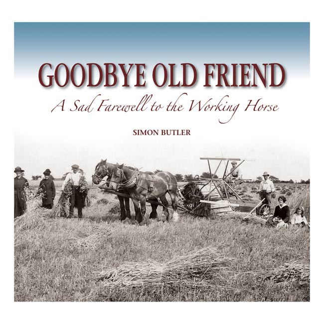 Goodbye Old Friend By Simon Butler General Non Fiction