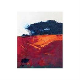 Simon Howden Copse Edge Canvas Print