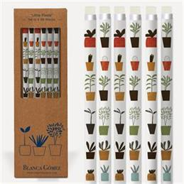 Blanca Gomez Little Plants Set of 6 HP Pencils